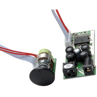 DAYTON AUDIO T-Amp kit